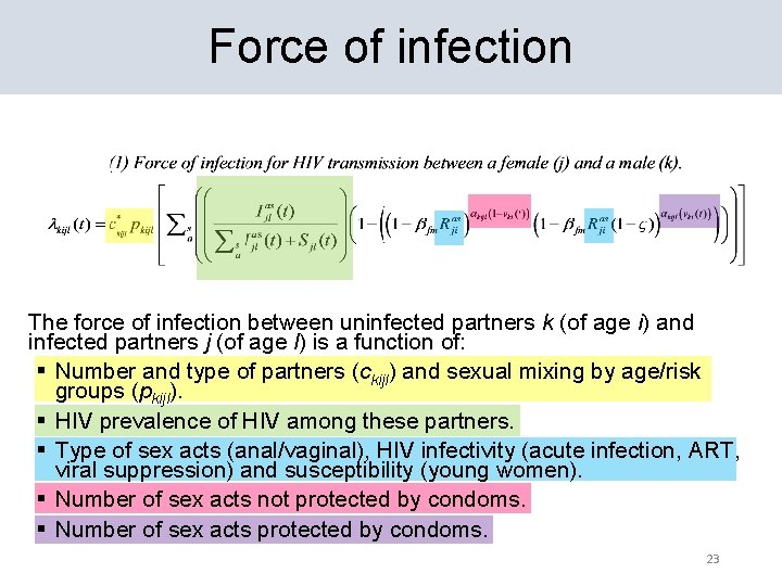 Force of infection The force of infection between uninfected partners k (of age i)