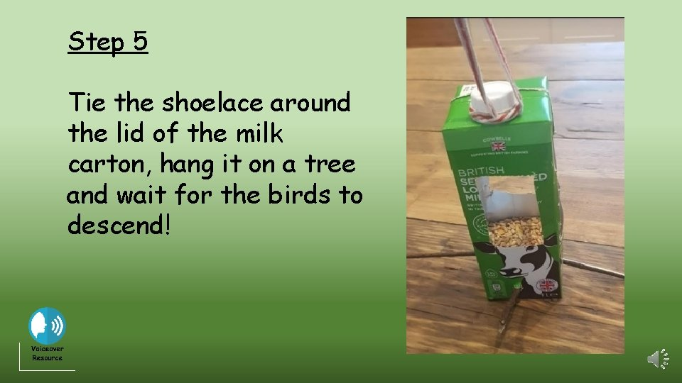 Step 5 Tie the shoelace around the lid of the milk carton, hang it