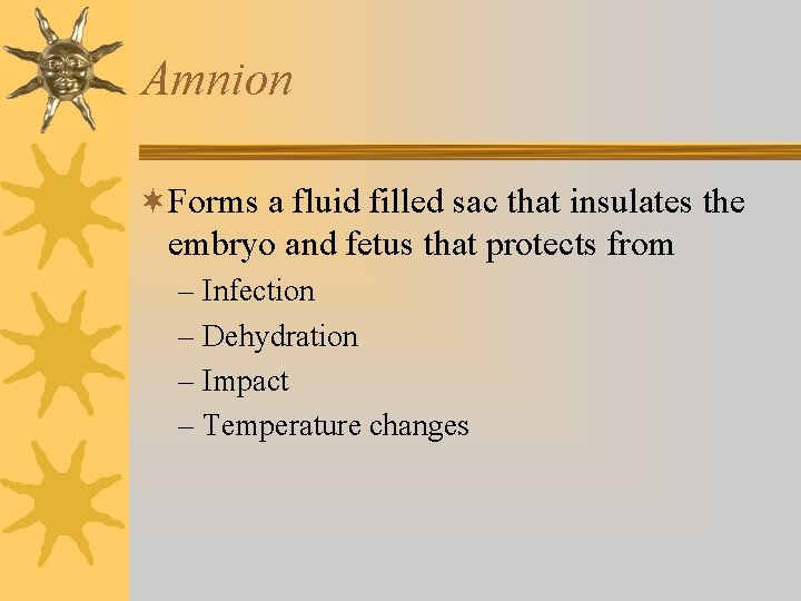 Amnion ¬Forms a fluid filled sac that insulates the embryo and fetus that protects
