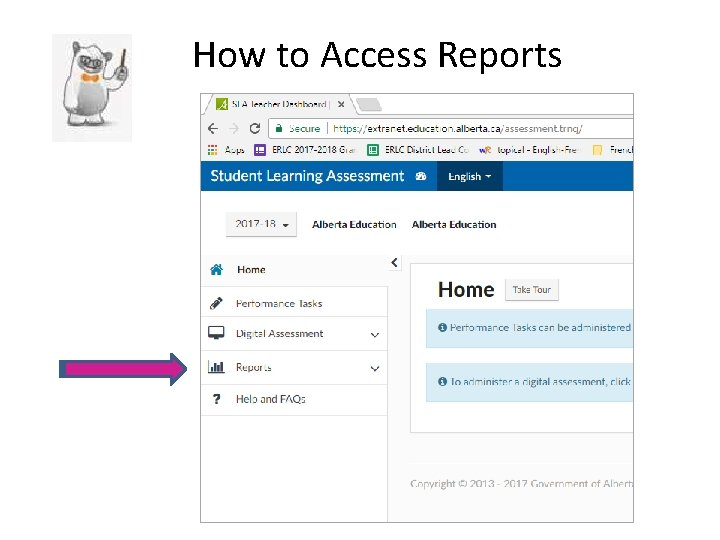 How to Access Reports