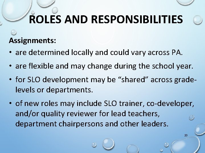 ROLES AND RESPONSIBILITIES Assignments: • are determined locally and could vary across PA. •