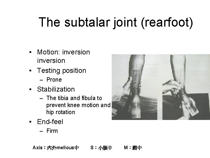 The subtalar joint (rearfoot) • Motion: inversion • Testing position – Prone • Stabilization