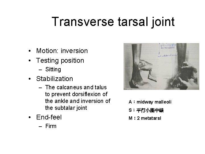 Transverse tarsal joint • Motion: inversion • Testing position – Sitting • Stabilization –