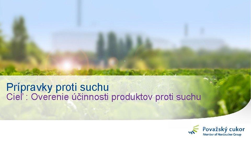 Prípravky proti suchu Cieľ : Overenie účinnosti produktov proti suchu 11
