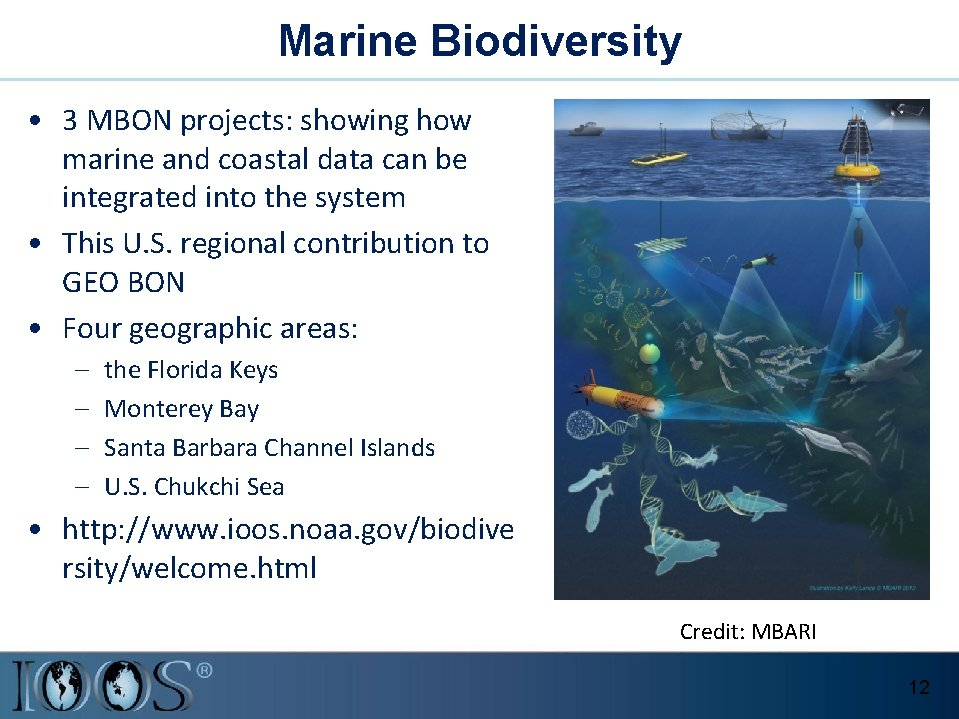 Marine Biodiversity • 3 MBON projects: showing how marine and coastal data can be
