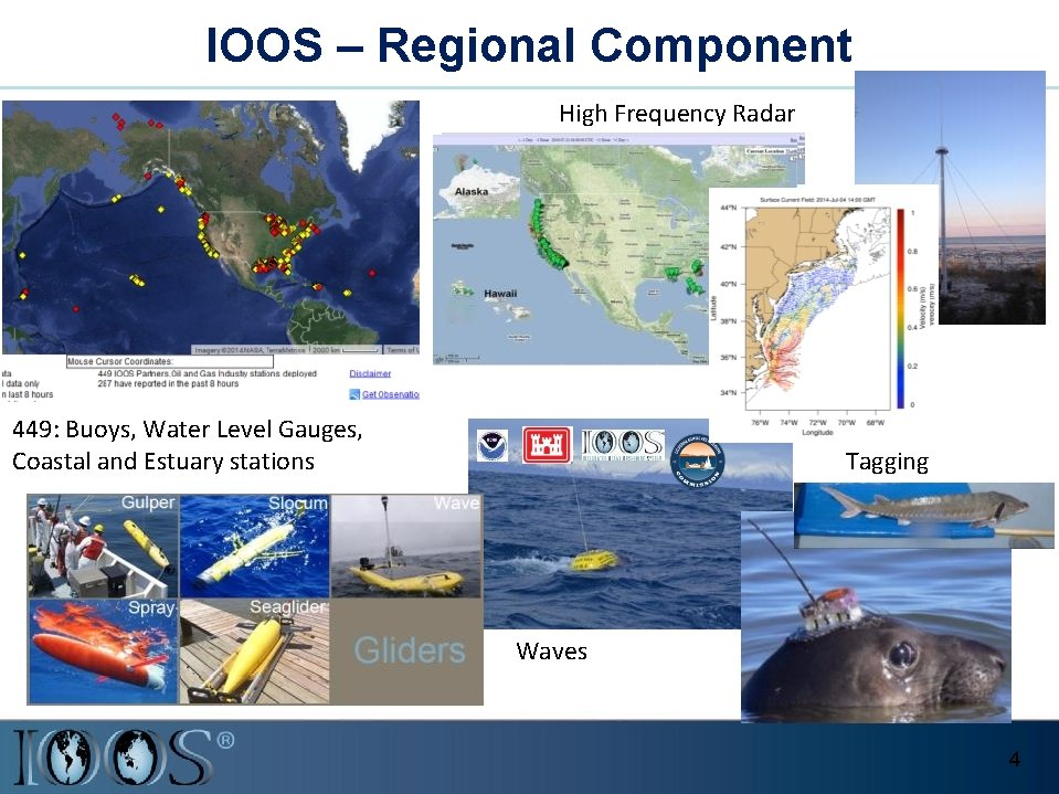 IOOS – Regional Component High Frequency Radar 449: Buoys, Water Level Gauges, Coastal and