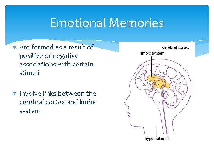 Emotional Memories Are formed as a result of positive or negative associations with certain