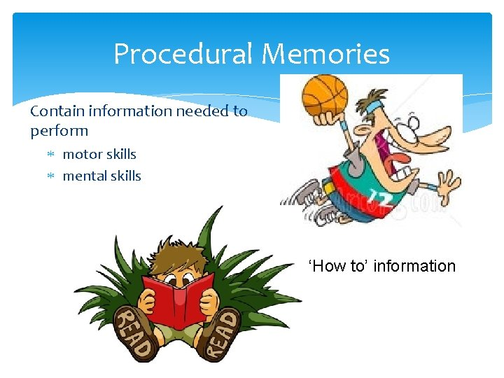 Procedural Memories Contain information needed to perform motor skills mental skills 'How to' information