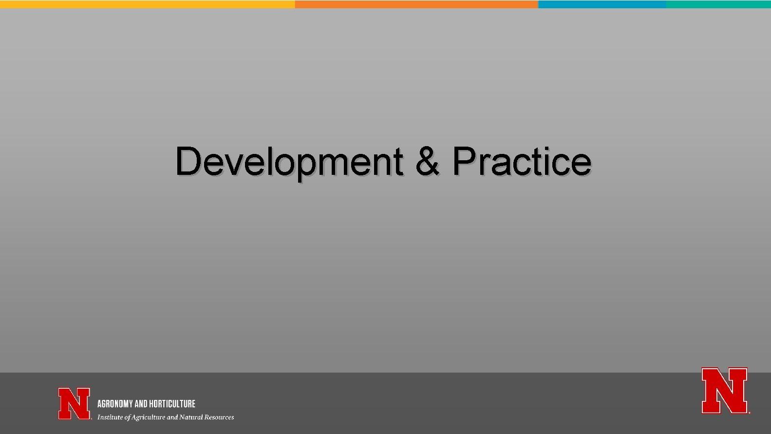 Development & Practice