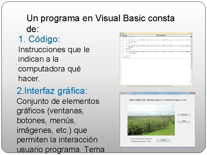 Un programa en Visual Basic consta de: 1. Código: Instrucciones que le indican a
