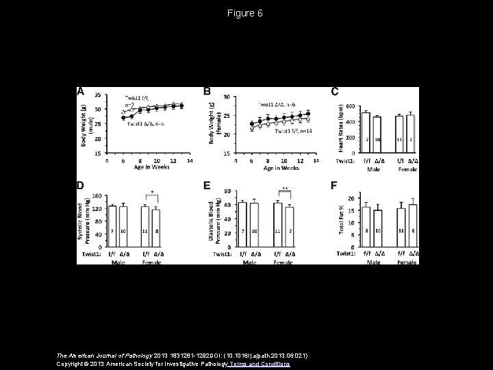 Figure 6 The American Journal of Pathology 2013 1831281 -1292 DOI: (10. 1016/j. ajpath.