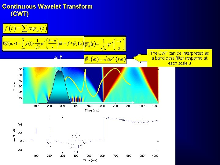 Continuous Wavelet Transform (CWT) Scales Amplitude The CWT can be interpreted as a band