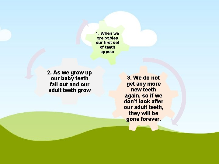 1. When we are babies our first set of teeth appear 2. As we