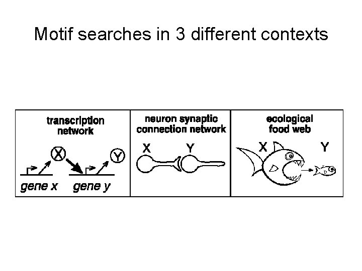 Motif searches in 3 different contexts