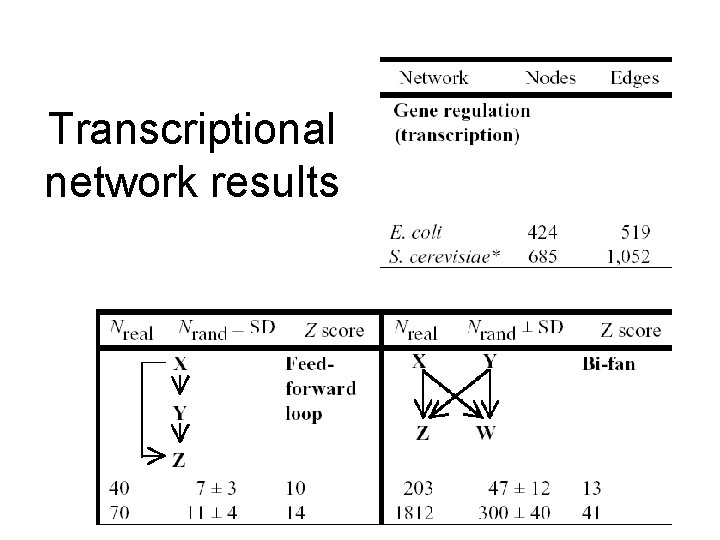 Transcriptional network results