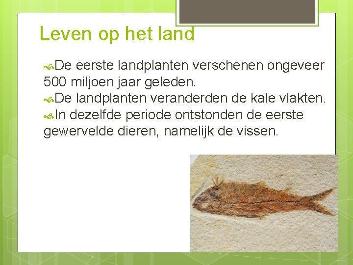 Leven op het land De eerste landplanten verschenen ongeveer 500 miljoen jaar geleden. De