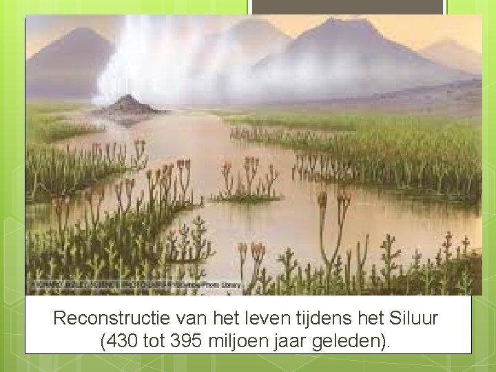Reconstructie van het leven tijdens het Siluur (430 tot 395 miljoen jaar geleden).