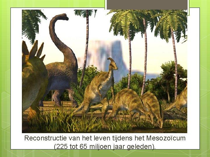 Reconstructie van het leven tijdens het Mesozoïcum (225 tot 65 miljoen jaar geleden).