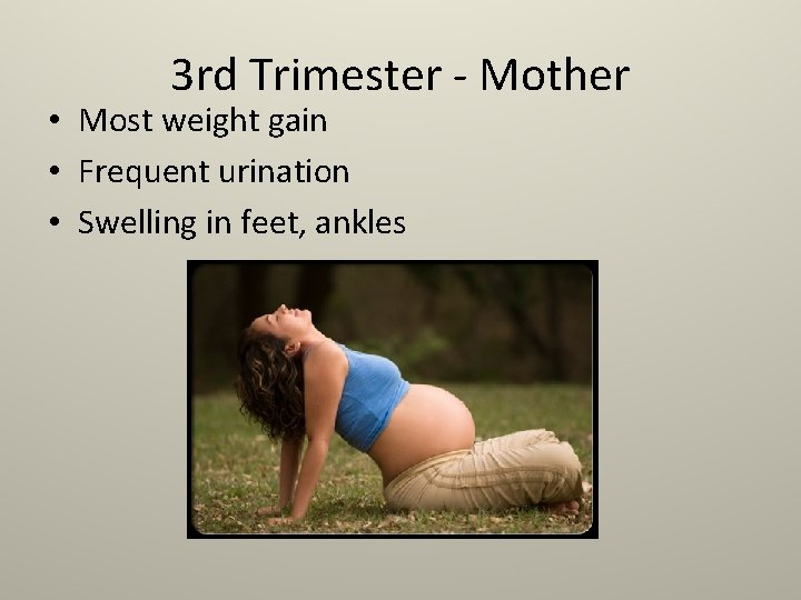 3 rd Trimester - Mother • Most weight gain • Frequent urination • Swelling