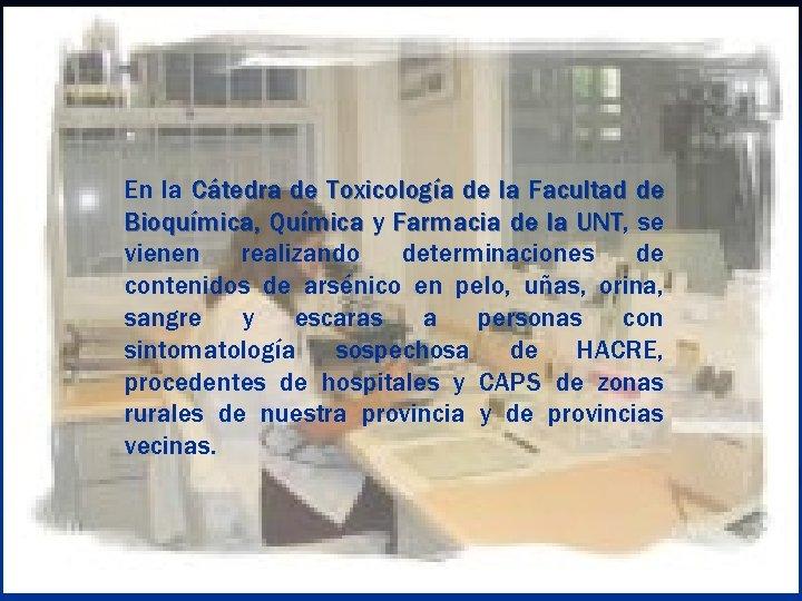 En la Cátedra de Toxicología de la Facultad de Bioquímica, Química y Farmacia de
