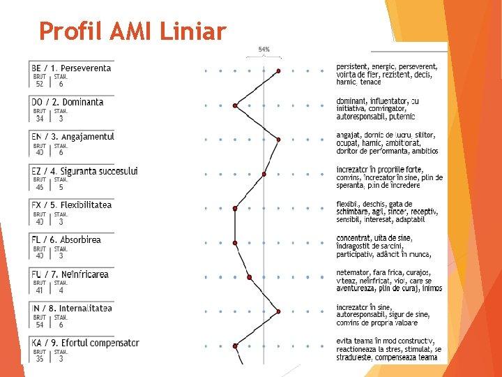 Profil AMI Liniar 32