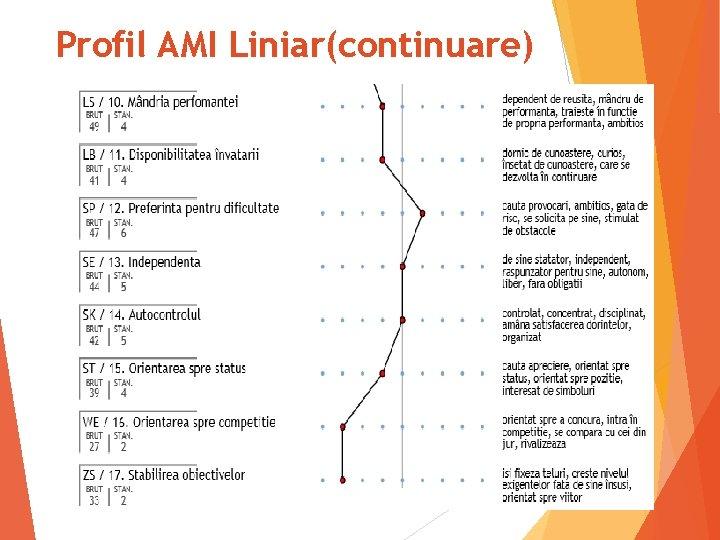 Profil AMI Liniar(continuare) 33