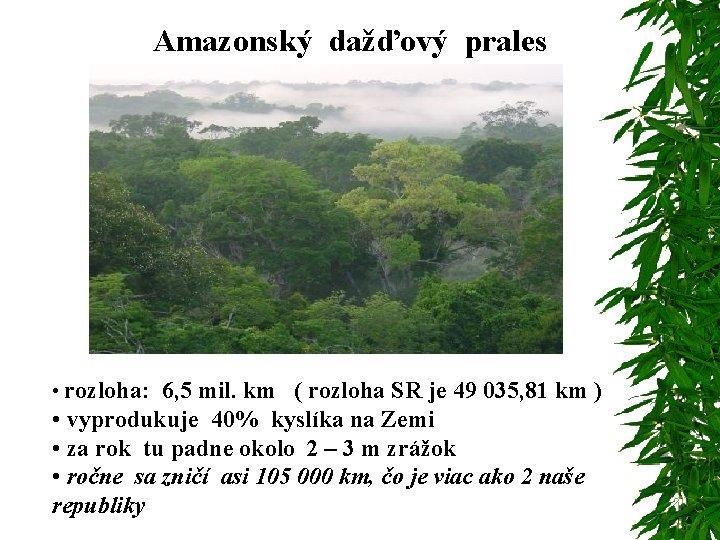 Amazonský dažďový prales • rozloha: 6, 5 mil. km ( rozloha SR je 49