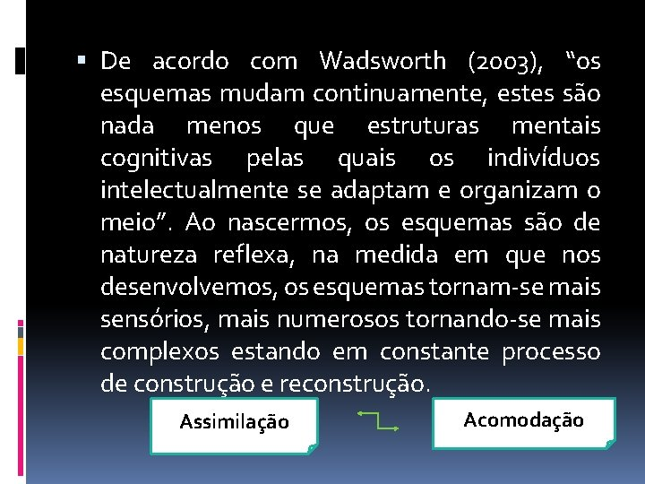 """De acordo com Wadsworth (2003), """"os esquemas mudam continuamente, estes são nada menos"""