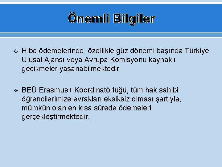 Önemli Bilgiler v Hibe ödemelerinde, özellikle güz dönemi başında Türkiye Ulusal Ajansı veya Avrupa