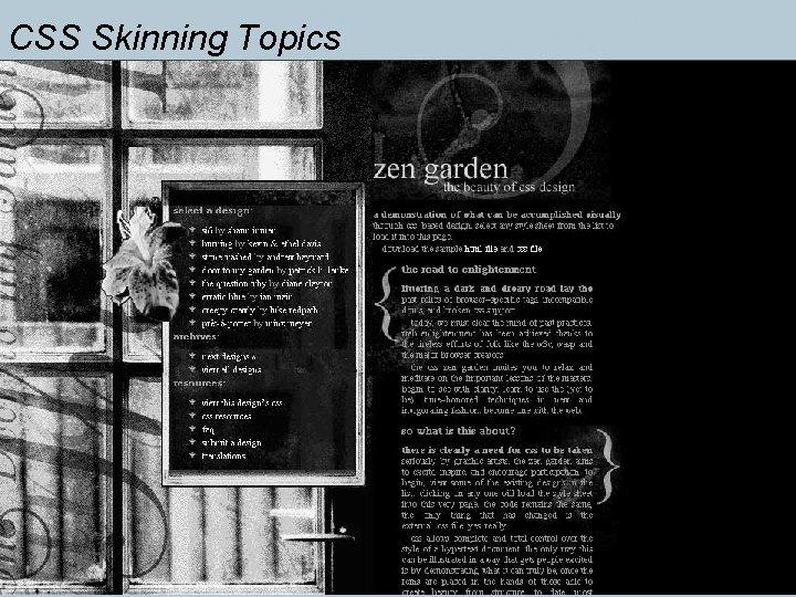 CSS Skinning Topics