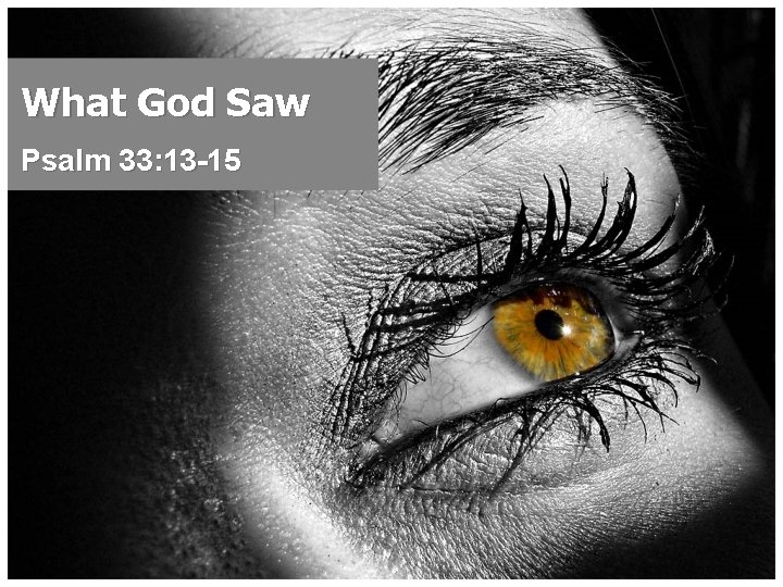 What God Saw Psalm 33: 13 -15
