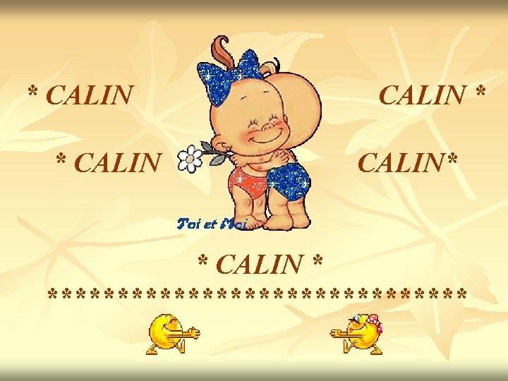 * CALIN * CALIN* * CALIN * ***************