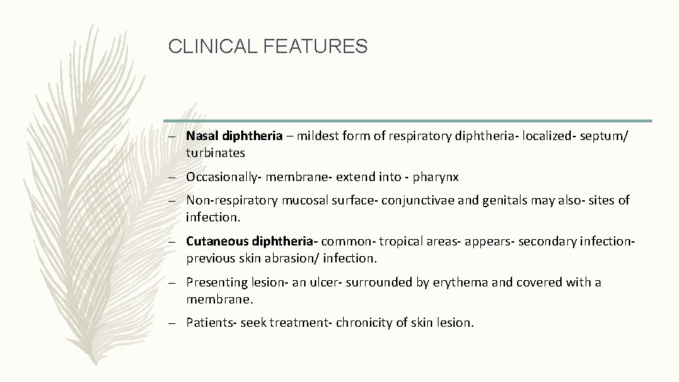 CLINICAL FEATURES – Nasal diphtheria – mildest form of respiratory diphtheria- localized- septum/ turbinates
