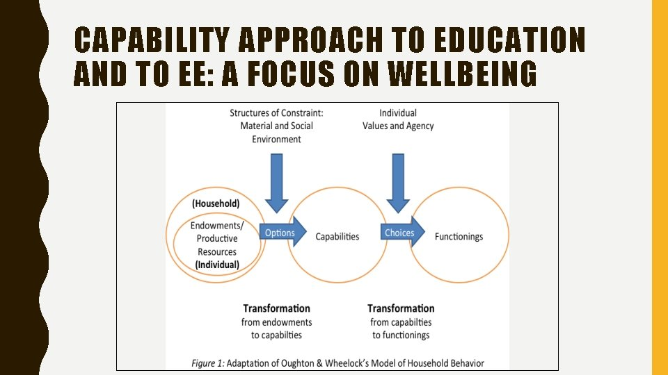 CAPABILITY APPROACH TO EDUCATION AND TO EE: A FOCUS ON WELLBEING