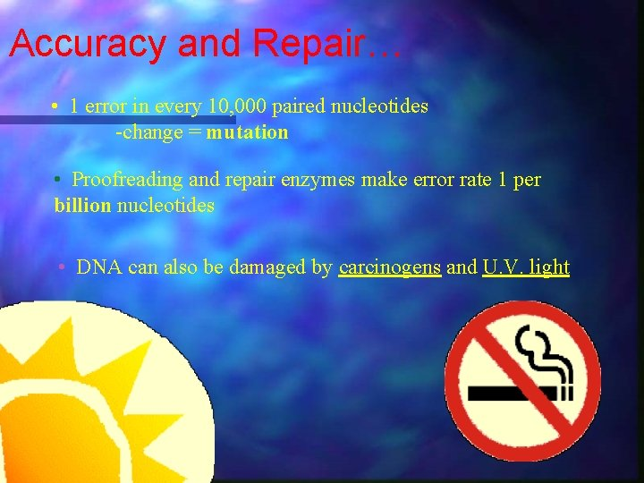 Accuracy and Repair… • 1 error in every 10, 000 paired nucleotides -change =