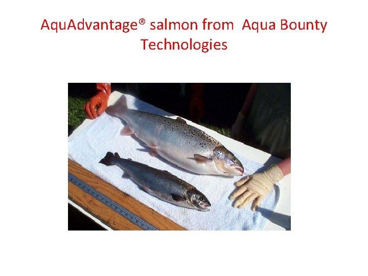 Aqu. Advantage® salmon from Aqua Bounty Technologies