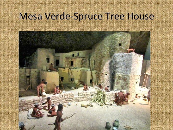 Mesa Verde-Spruce Tree House