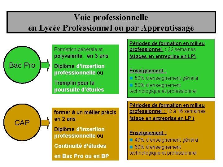Voie professionnelle en Lycée Professionnel ou par Apprentissage Formation générale et polyvalente en 3
