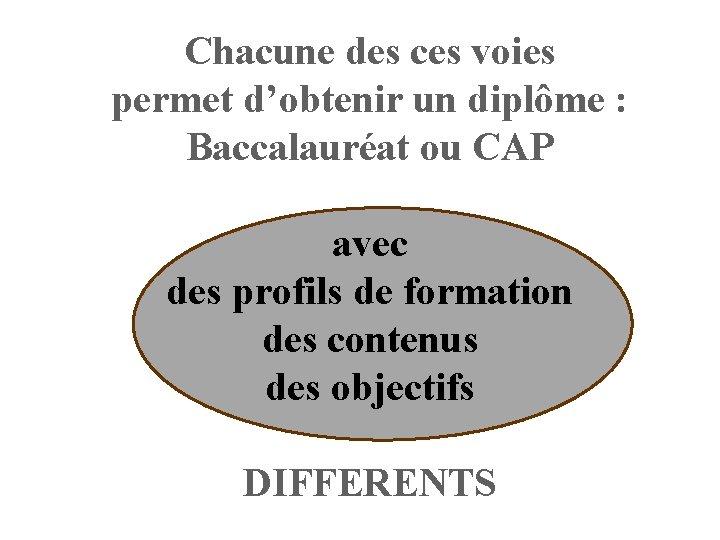 Chacune des ces voies permet d'obtenir un diplôme : Baccalauréat ou CAP avec des