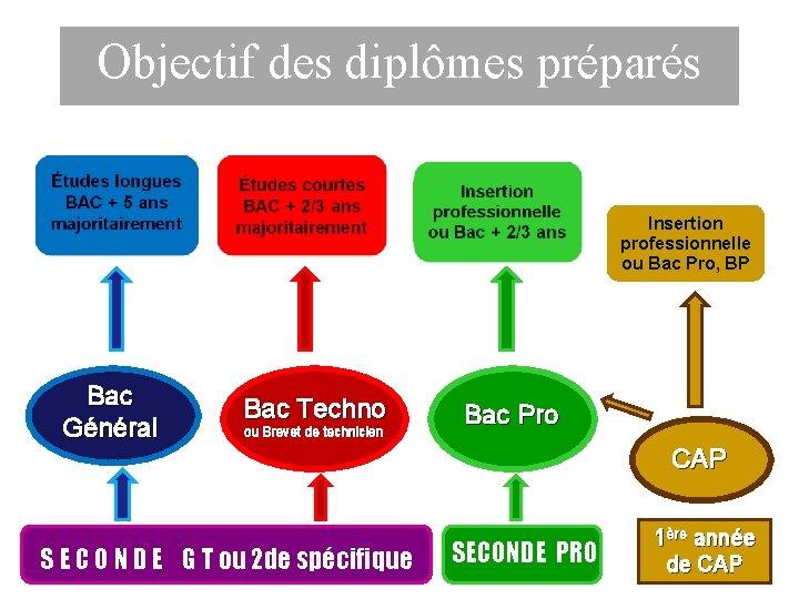 Objectif des diplômes préparés Insertion professionnelle ou Bac Pro, BP Bac Général Bac Techno