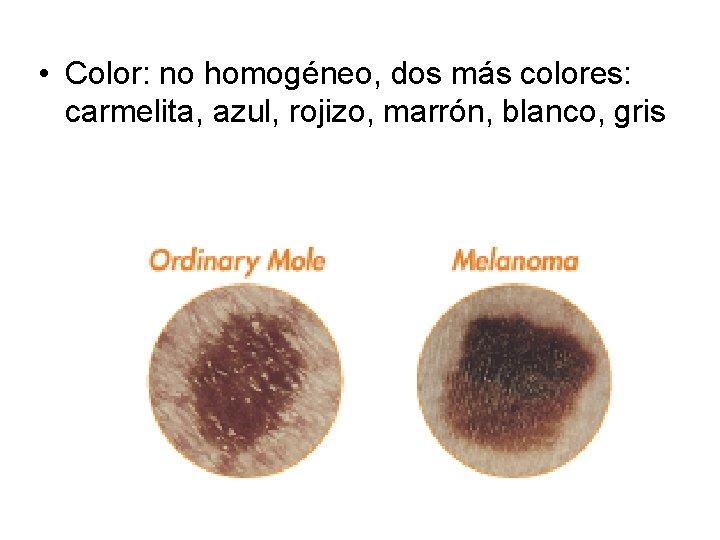 • Color: no homogéneo, dos más colores: carmelita, azul, rojizo, marrón, blanco, gris