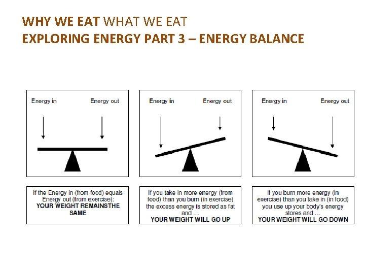WHY WE EAT WHAT WE EAT EXPLORING ENERGY PART 3 – ENERGY BALANCE