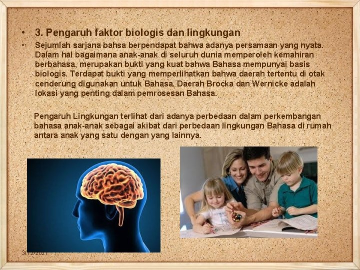• 3. Pengaruh faktor biologis dan lingkungan • Sejumlah sarjana bahsa berpendapat bahwa