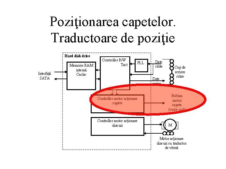 Poziţionarea capetelor. Traductoare de poziţie Hard disk drive Interfaţă SATA Memorie RAM internă Cache