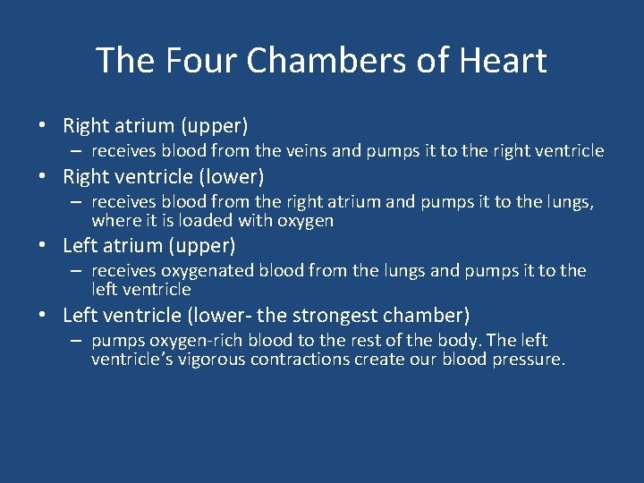 The Four Chambers of Heart • Right atrium (upper) – receives blood from the