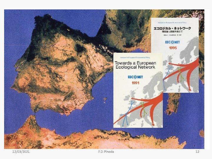 1995 1991 12/03/2021 F. D. Pineda 12