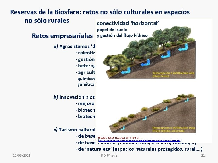 Reservas de la Biosfera: retos no sólo culturales en espacios no sólo rurales conectividad