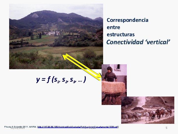 Correspondencia entre estructuras Conectividad 'vertical' y = f (s 1, s 2, s 3,