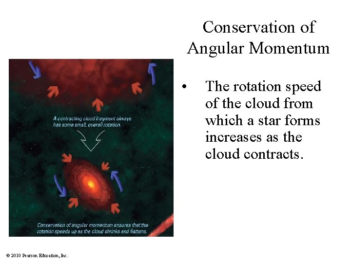 Conservation of Angular Momentum • © 2010 Pearson Education, Inc. The rotation speed of
