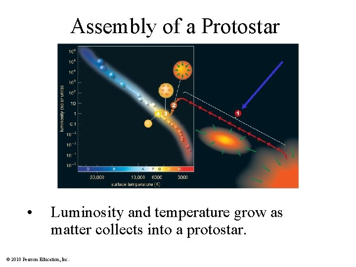 Assembly of a Protostar • Luminosity and temperature grow as matter collects into a